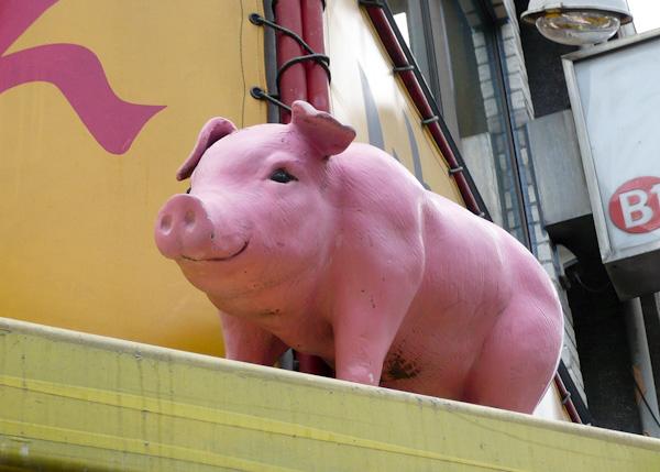 Tokyo Pig happy eating